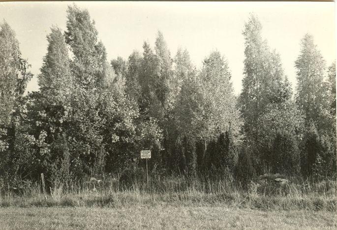 Kivikalme lõunast. Foto: E. Väljal, 1982. (Saaremaa arheoloogiamälestiste passid).