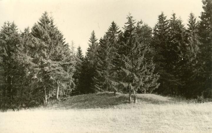 Kivikalme. Foto: H. Joonuks, 1971.