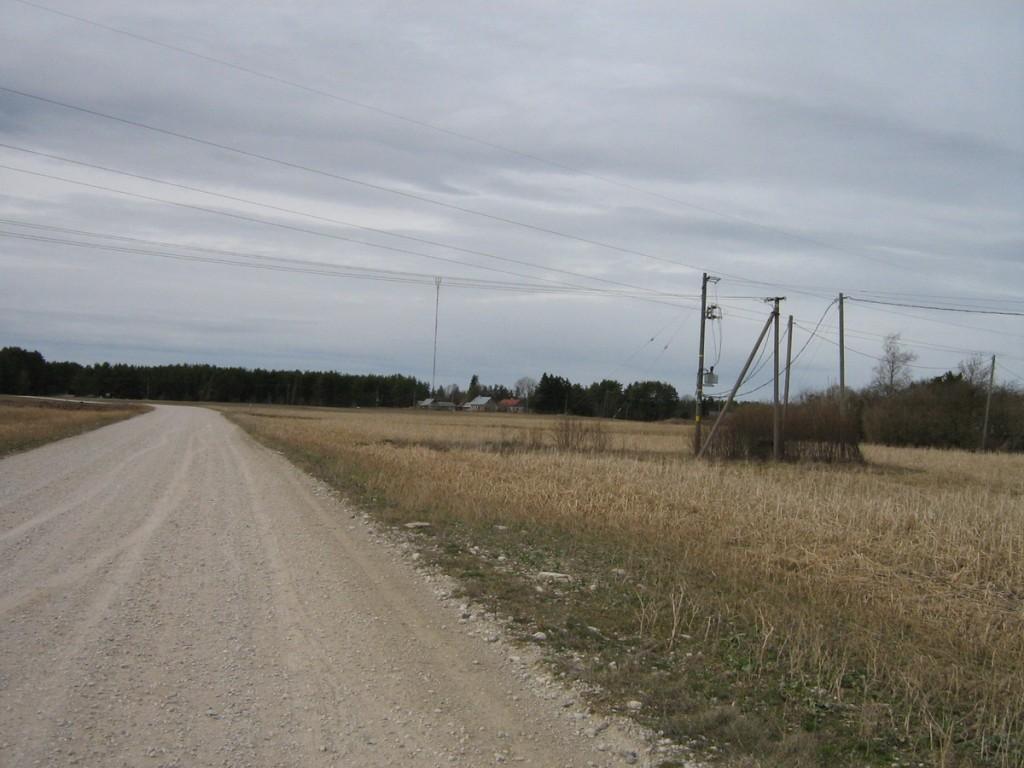 Vaade idast tee põhjaküljele. Foto: K. Pets, 17.04.2010.