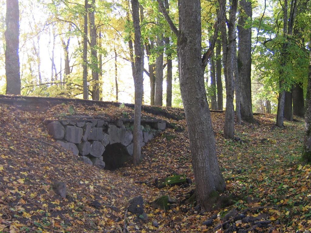 Vaade sillale 2008 a. sügis. Autor Viktor Lõhmus
