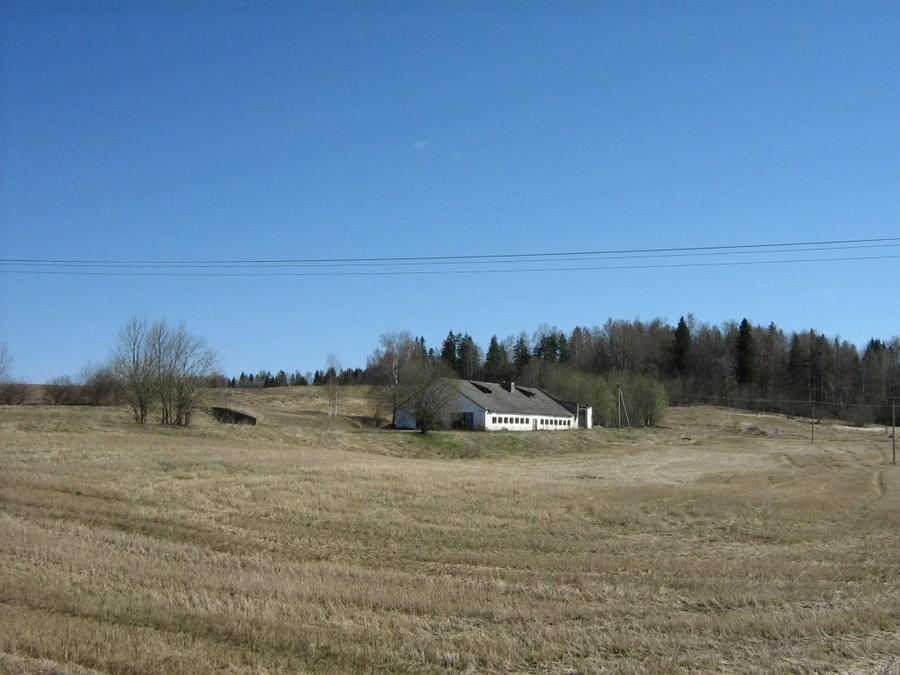 """Kalmistu """"Kolgata"""", """"Pealuumägi"""". Foto: M. Abel, 28.04.2010."""