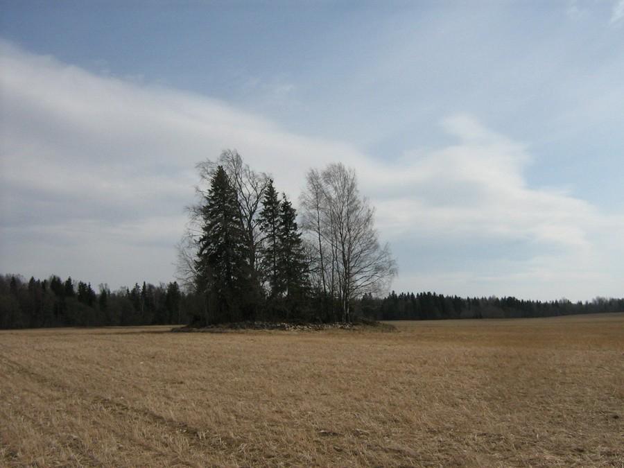 """Kivikalme """"Toomamägi"""", vaade põhjast. Foto: M. Abel, 27.04.2010."""