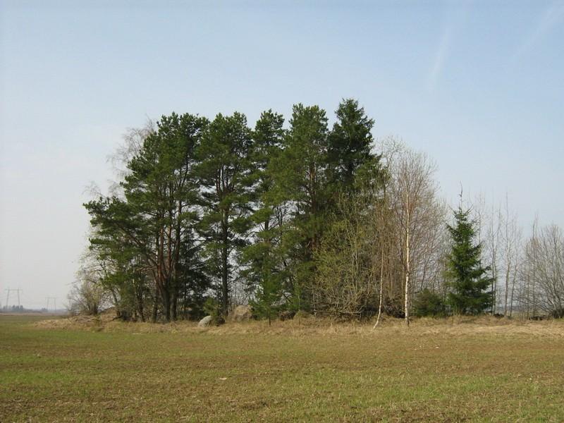 """10641 kivikalme """"Kalmuküngas"""", vaade põhjast. Foto: M. Abel, 30.04.2010."""