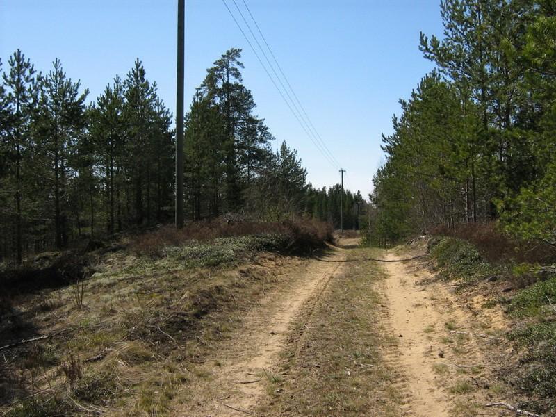 """Pelgupaik """"Seljamägi"""", vaade idast. Foto: M. Abel, 03.05.2010."""