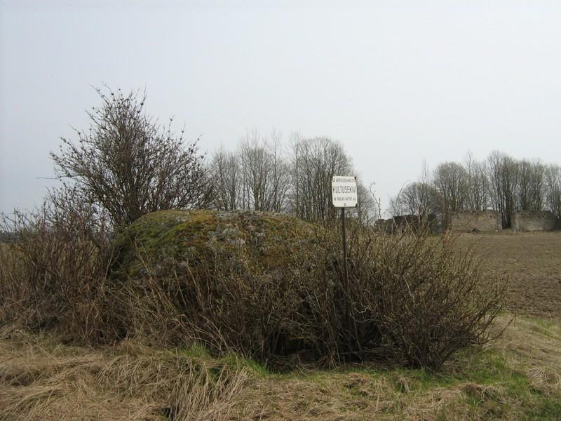Lohukivi reg nr 10671 loodest, taamal Võhu mõisa aida varemed. Foto: M. Abel, 30.04.2010.
