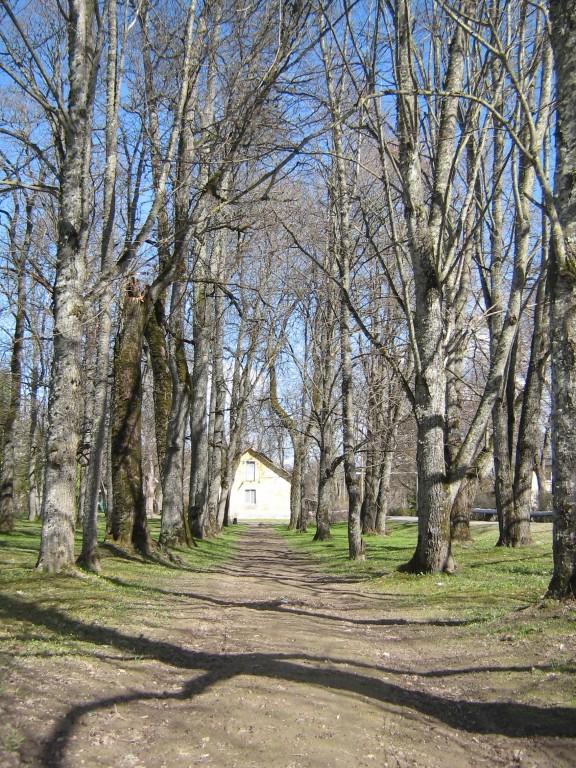 Vaade Kose-Uuemõisa pargile.