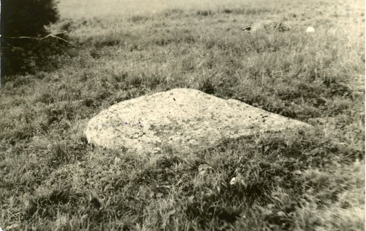 Lohukivi reg nr 10188. Foto: H. Joonuks, 1971.