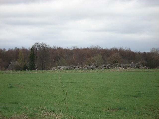 Vaade mälestisele edelast. Foto: Vimberg, 2010.