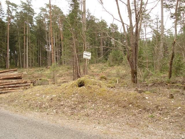 Kivikalme reg nr 12545. Foto: R. Peirumaa, 2008.