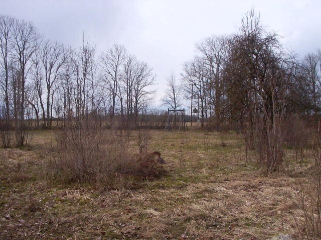 Peahoone tagune pargiosa, taamal lagunenud kiik    Autor Tarvi Sits    Kuupäev  20.04.2005