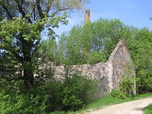 Aavere mõisa viinavabriku varemed : 16076 vaade lõunast  Autor: Anne Kaldam  Kuupäev:  19.05.2010