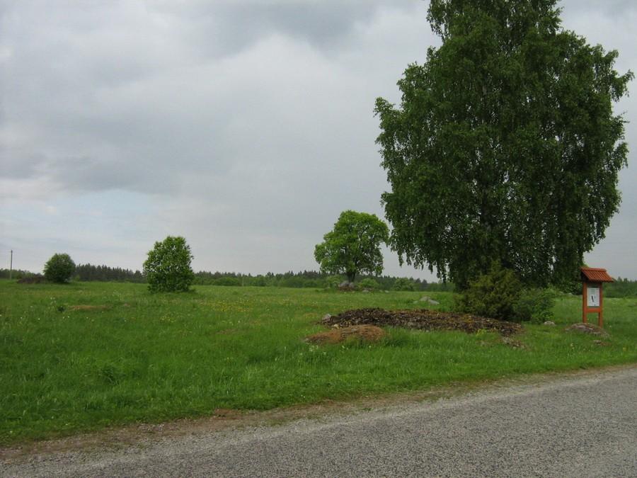 Muistsed põllud ja põllukvihunnikud Tõugul, vaade edelast. Foto: M. Abel, 28.05.2010.