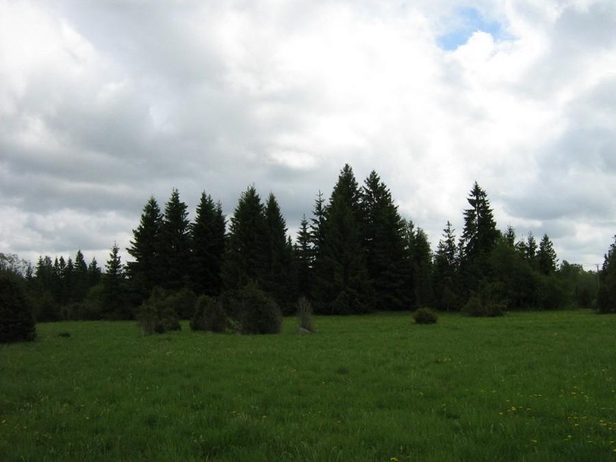 Jussikääbas, vaade loodest. Foto: M. Abel, 28.05.2010.