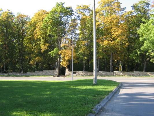 Kadrina kirikuaia piirdemüür15663, vaade idapoolsele müürile. aeg: 24.09.2008 autor: Anne Kaldam