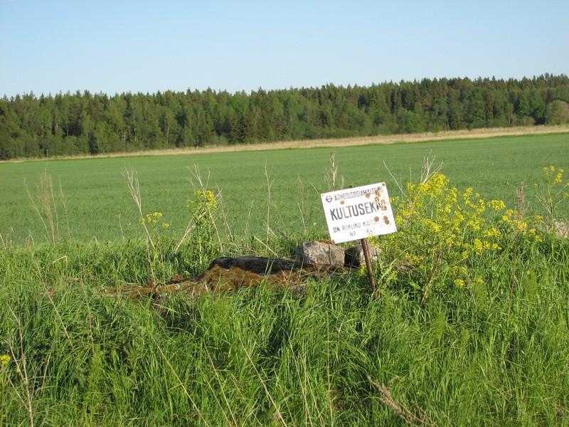 Kultusekivi reg nr 10838, vaade läänest. Foto: E. Ehrenpreis, juuli 2006.