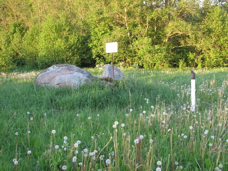 Kultusekivi reg nr 10845, vaade loodest. Foto: E. Ehrenpreis, juuli 2006.