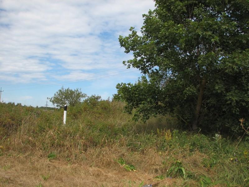 Kivikalme reg nr 10684, vaade kagust. Foto: E. Ehrenpreis, juuli 2006.