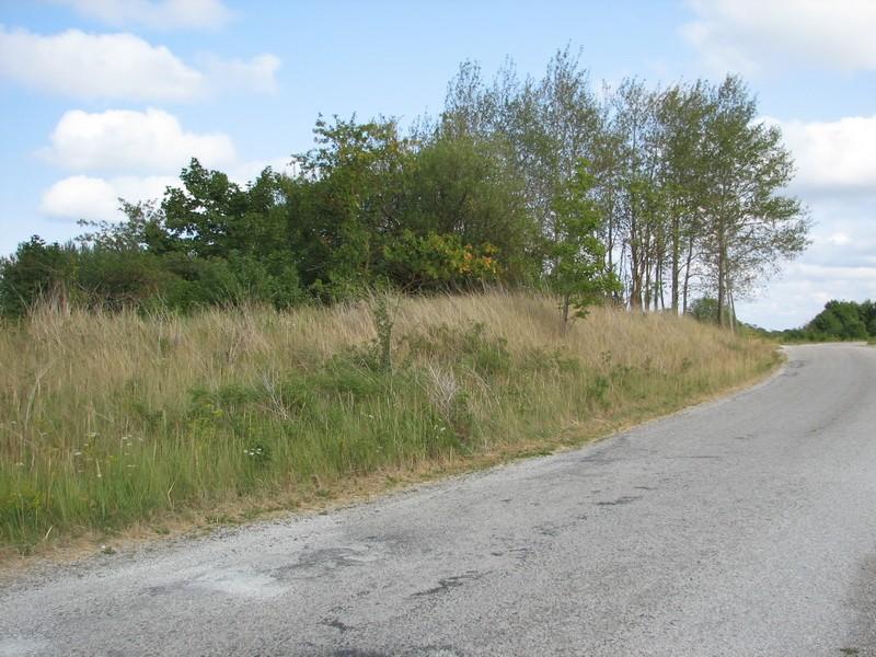 Kivikalme reg nr 10695, vaade läänest. Foto: E. Ehrenpreis, juuli 2006