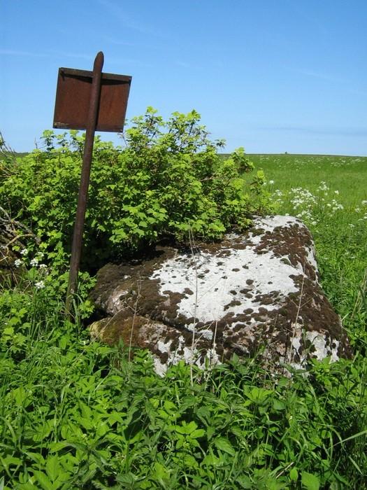 Kultusekivi reg nr 10850, vaade edelast. Foto: M. Abel, 07.06.2010.