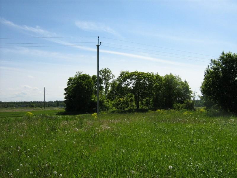 Kivikalme reg nr 10685, vaade kirdest. Foto: M. Abel, 07.06.2010.