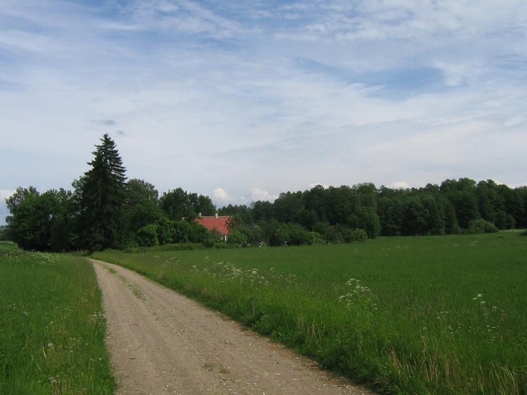 Vaade asulakohale, eespool kinnistuomaniku Villu Võsobergi talu, asulakoht laiub taluga samal teepoolel, kus on praegu lage heinapõld. Foto: Viktor Lõhmus, 10.06.2010.