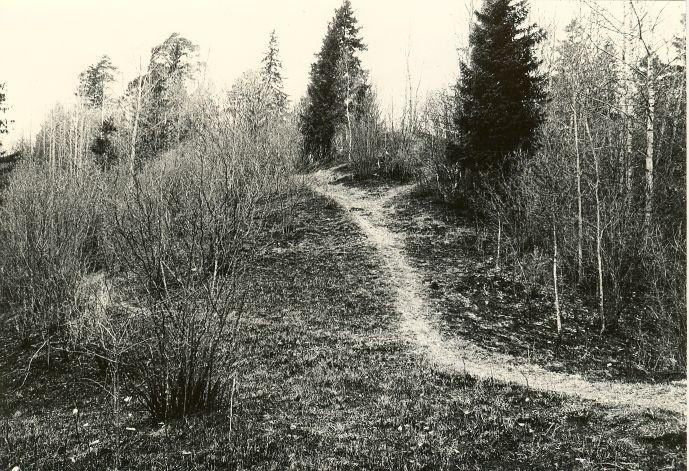 Jäneda Linnamägi. Foto: E. Väljal, 29.04.1983.