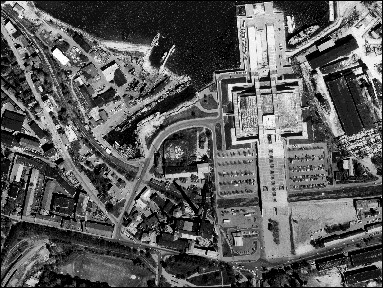 Tallinna Linnahall, 1980-1981