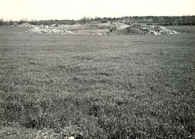 Kivikalme ja asulakoht (reg nr 12387) - edelast. Foto: E. Väljal, 15.05.1983. (Muinsuskaitseameti arhiiv).
