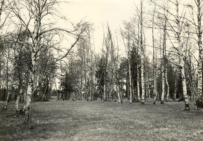 Maa-alune kalmistu - kagust. Foto: E. Väljal, 04.05.1983.