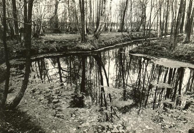 Ohvriallikas - läänest. Foto: E. Väljal, 04.05.1983.