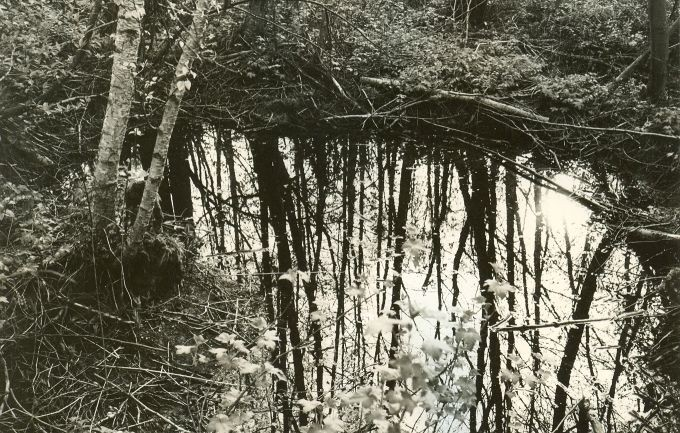 Ohvriallikas - läänest. Foto: E. Väljal, 22.06.1985.