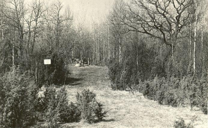 Kivikalme - idast. Foto: E. Väljal, 11.05.1982. (Muinsuskaitseameti arhiiv).