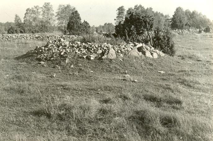Kivikalme - edelast. Foto: E. Väljal, 05.10.1982.