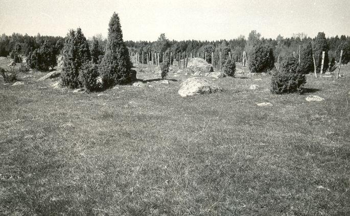 Asulakoht ja muistsed põllud (reg nr 12540) - lõunast. Foto: E. Väljal, 14.05.1984.