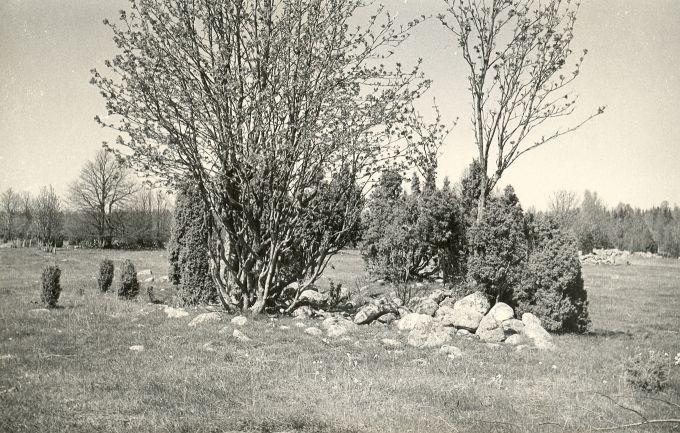 Kivikalme - lõunast.  Foto: E. Väljal, 14.05.1984.