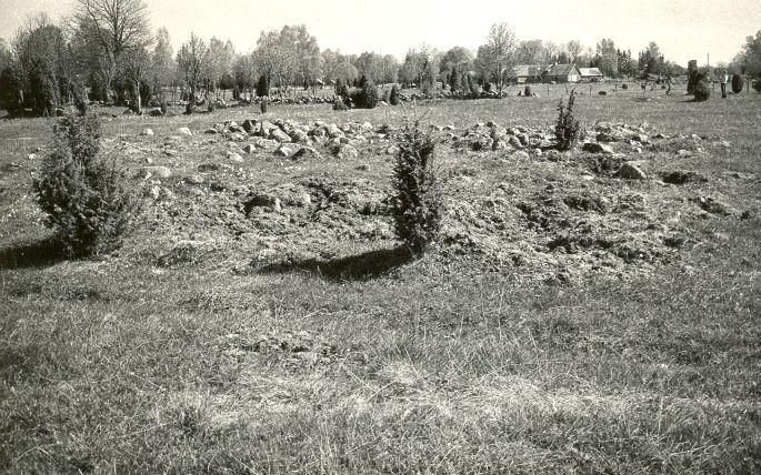 Muistsed põllud - loodest. Foto: E. Väljal, 14.05.1984.
