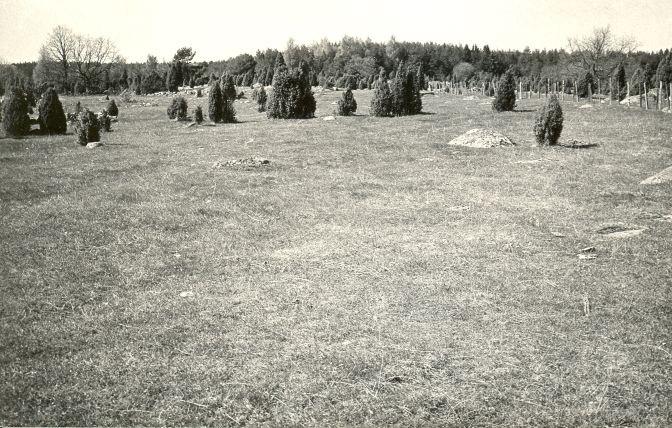 Muistsed põllud (reg nr 12540-12541) - kagust. Foto: E. Väljal, 14.05.1984.