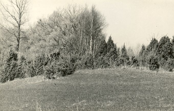 Kivikalmed (reg nr 12629-12637) - edelast. Foto: E. Väljal, 10.05.1982.