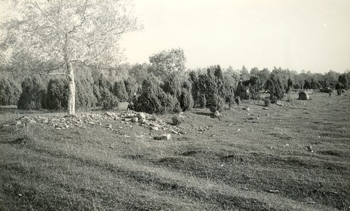 Kivikalmed (reg nr 12710-12724) - edelast. Foto: E. Väljal, 06.10.1982.