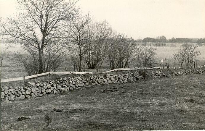 Muistne sadamakoht - läänest. Foto: E. Väljal, 10.05.1982.