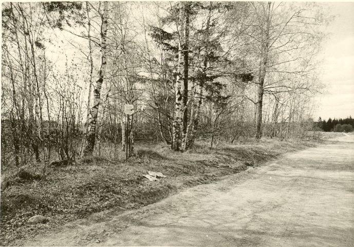 Kivikalme (tagaplaanil kivikalme reg nr 13198). Foto: O. Kõll, 13.05.1980.