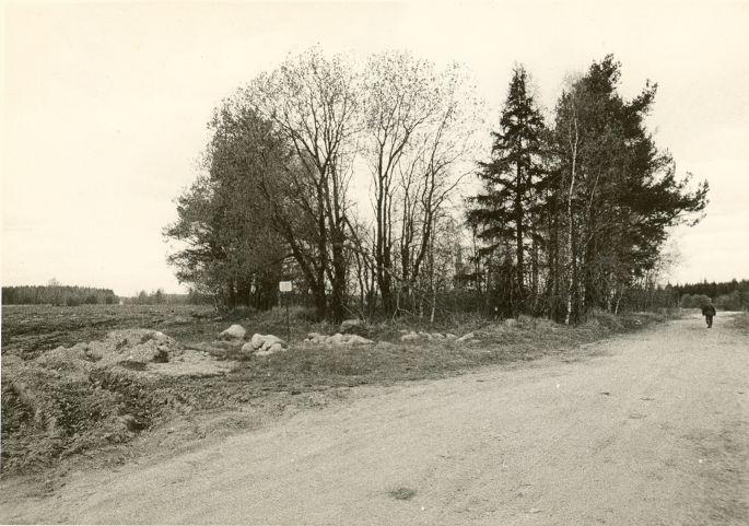Kivikalmed (reg nr 13198-13199). Foto: O. Kõll, 13.05.1980.