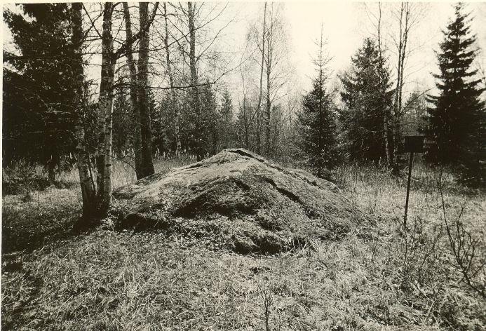 Ohvrikivi. Foto: O. Kõll, 14.05.1980.