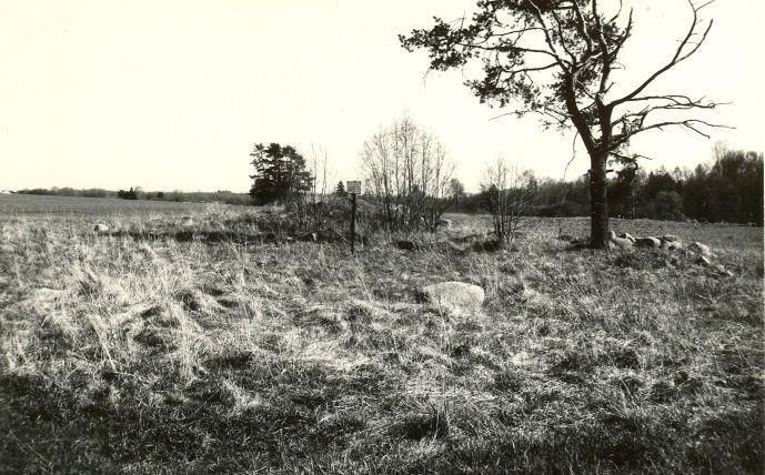 Kivikalme - loodest. Foto: E. Väljal, 10.05.1991.
