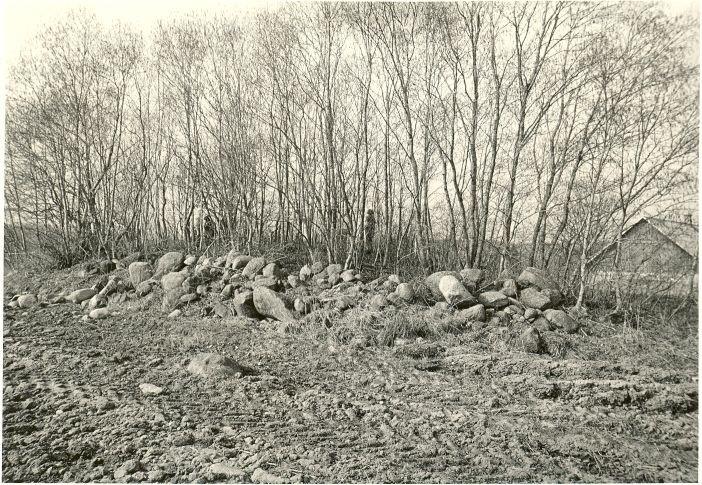 Kivikalme. Foto: O. Kõll, 29.04.1980.