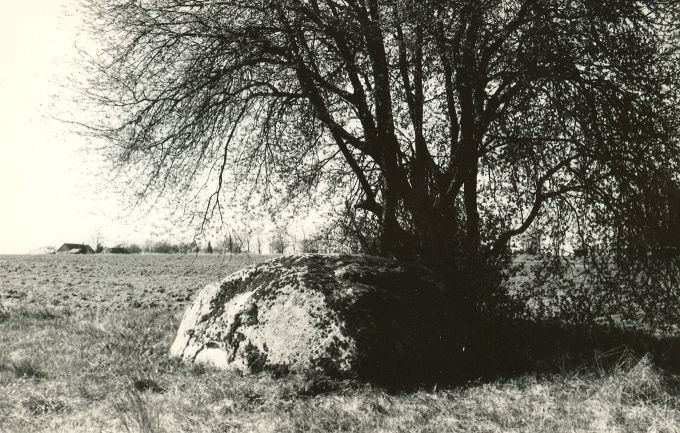 Kultusekivi - kirdest. Foto: E. Väljal, 09.05.1991.