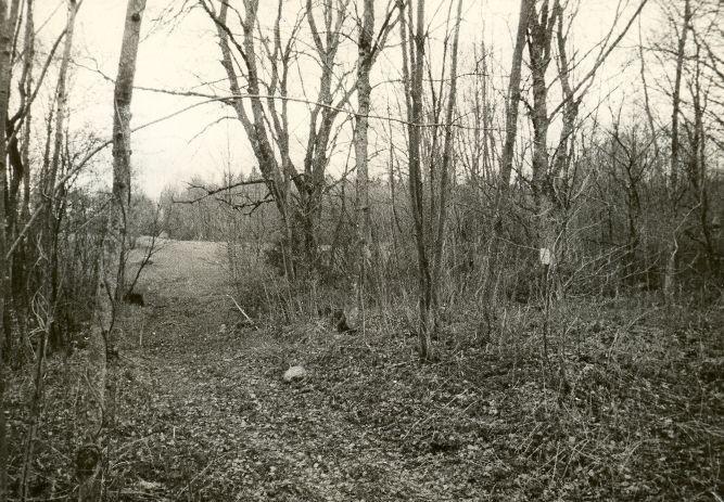 Kivikalme. Foto: O. Kõll, 13.05.1980.