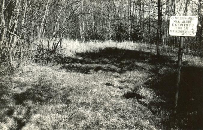 Maa-alune kalmistu - edelast. Foto: E. Väljal, 09.05.1991.