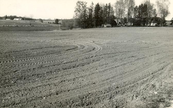 Asulakoht. Foto: E. Väljal, 09.05.1991.
