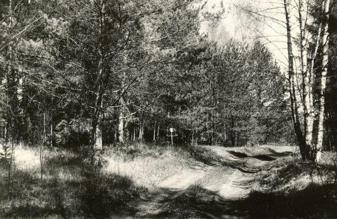 Maa-alune kalmistu - edelast. E. Väljal. 9. mai 1991